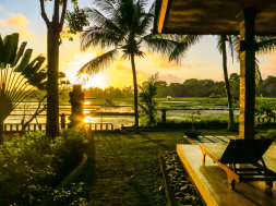 amazing-veiw-of-green-field-hotel-ubud-bali-travel-experiences