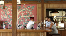 bar-of-alaya-ubud-bali