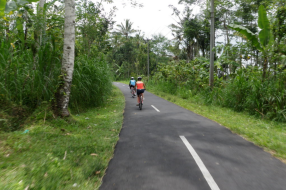 biking-from-kintamani-and-downhill-to-ubud-bali-travel-experiences
