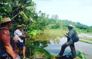 mayong-ricefield-trekking