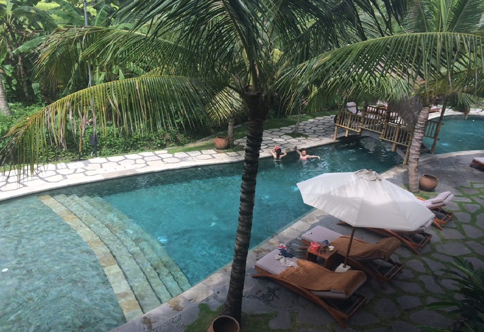 pool-area-or-outdoor-area-of-alaya-ubud-resort