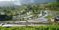 sidemen-villages-valley-bali-travel-experiences