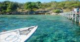 snorkeling-trip-to-menjangan-island-bali-travel-experiences