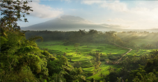 the-beauty-of-sidemen-villages-valley-bali-travel-experiences