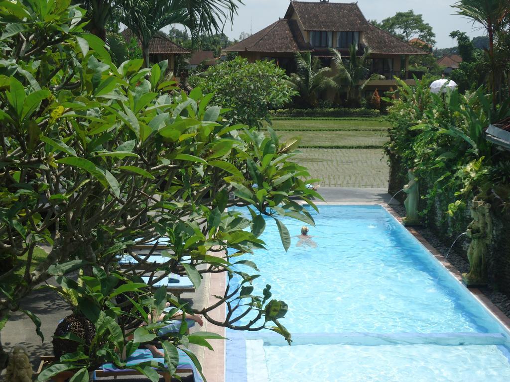 the-pool-of-sri-bungalows-ubud-bali-travel-experiences