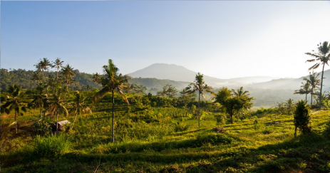 walking-tour-to-sidemen-villages-valley-bali-travel-experiences